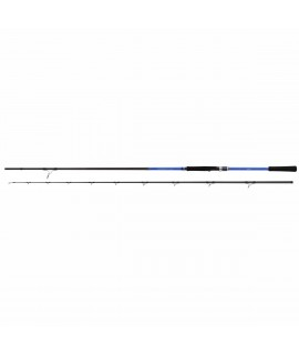 Shimano Blue Romance AX Power Game 300cm 40-80gr Shore Jig Kamışı